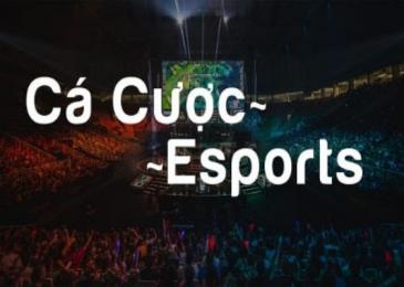 Cá cược Esports là gì? Cách cá cược Esports dễ ăn tiền nhất